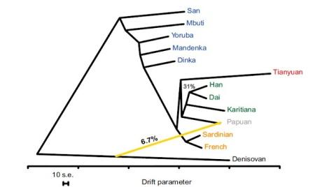 Grafo de comparación de las 11 poblaciones.