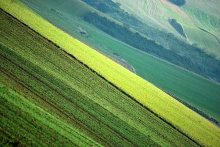 paisaje castellano 4