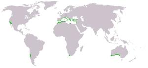 Macchia_mediterranea_map