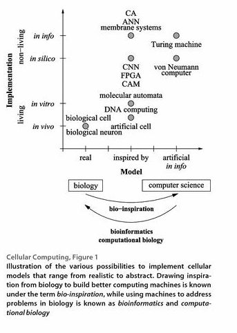 biologia-y-computacion