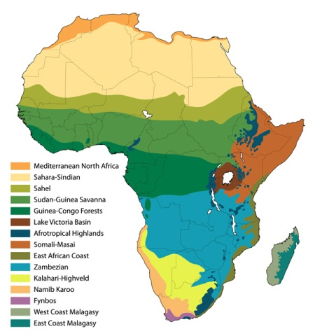 africa-biomes