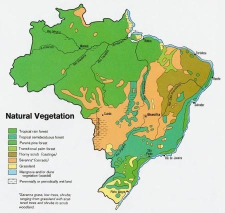 biomas-de-brasil