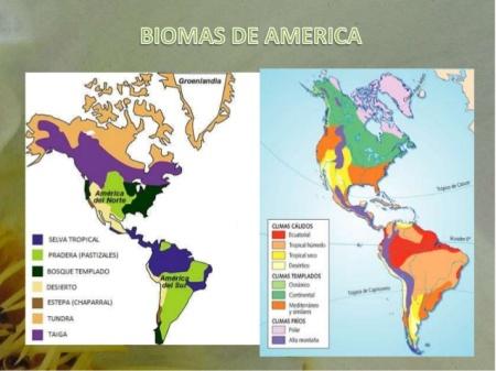 biomas-trabajo-final-14-638