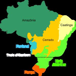brazil-biomes