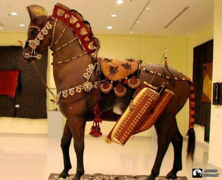 caballo-escita